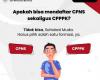 Mendaftar CPNS dan PPPK